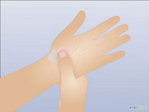 Image Source:wikihow.com