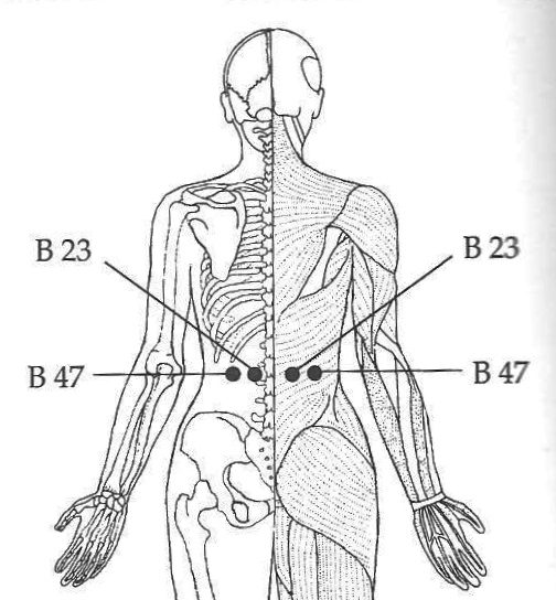 Most Important Acupressure Points for Back Pain ...