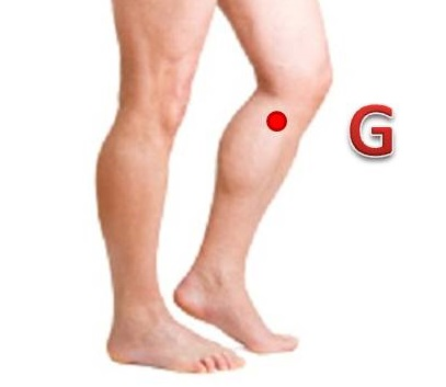 8 Effective Acupressure Points For Knee Pain Acupressure Points Guide