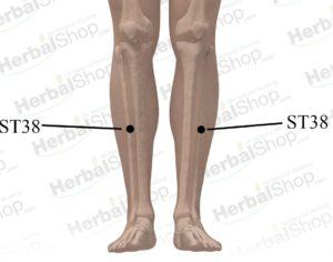 Pressure points for shoulder pain